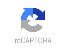 recaptcha_18.png