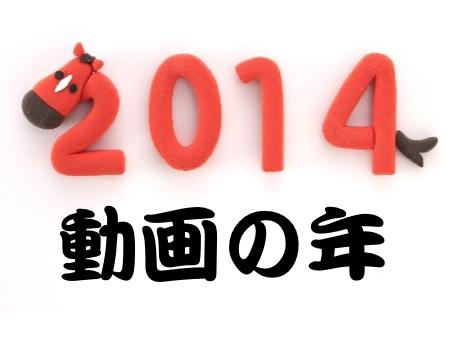 2014年は動画の年