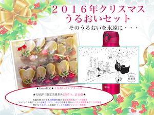 クリスマスうるおいセット2016