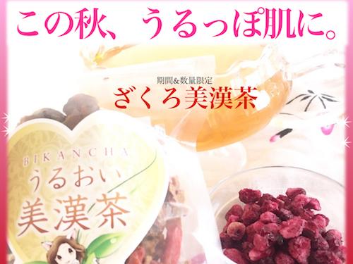 161026ざくろ美漢茶画像mm.jpg