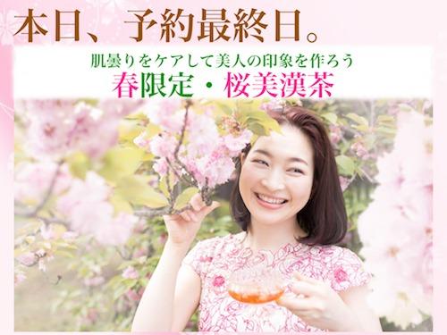 180305桜美漢茶最終日1mm.jpeg