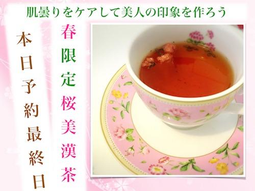 180305桜美漢茶最終日3mm.jpeg