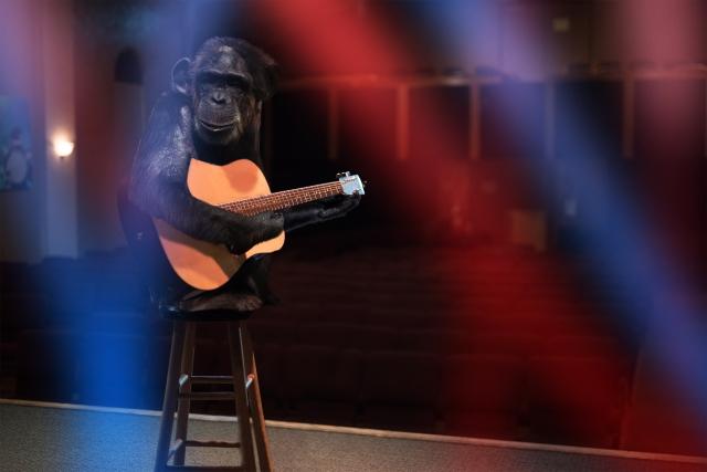 ステージ、歌、ギター.jpg