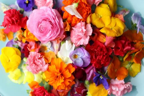 お花、プレゼント.jpg