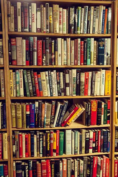 books-535352_960_720.jpg
