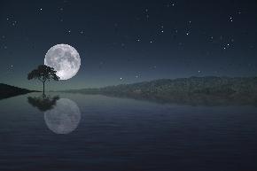 full-moon-4588727_1280.jpg