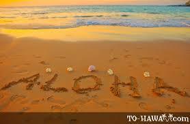 ハワイ画像.jpeg