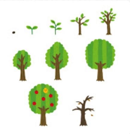 木の変化成長