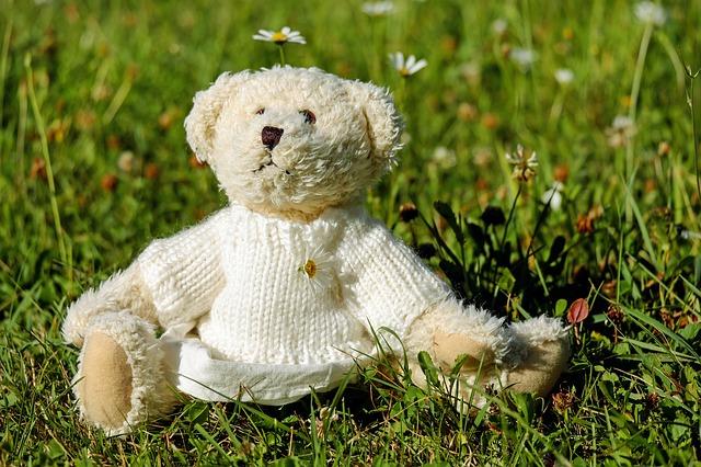 teddy-1623436_640.jpg