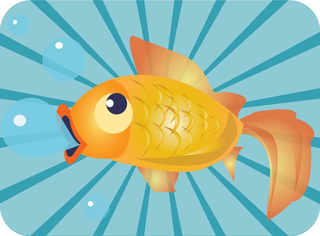 fish-158184_640.png