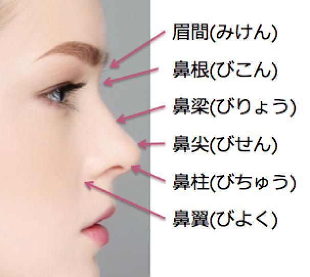 鼻の名称.png