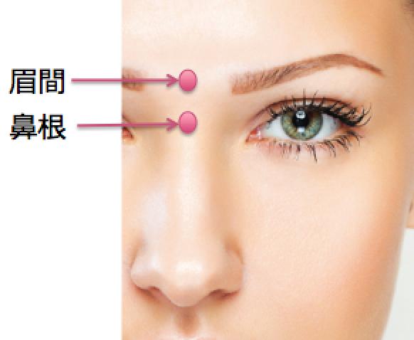 眉間と鼻根.png
