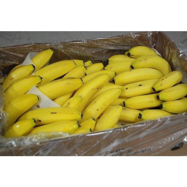 バナナ箱買い.jpeg