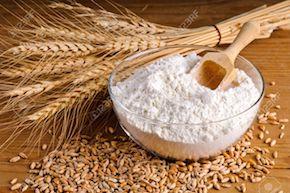 13981683-Closeup-of-wheat-grain-and-flour-Stock-Photo.jpg
