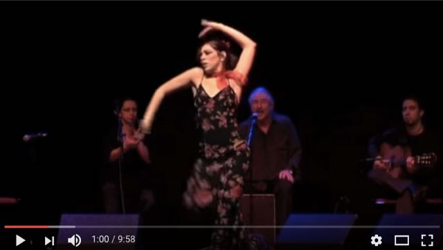 flamenco02.jpg
