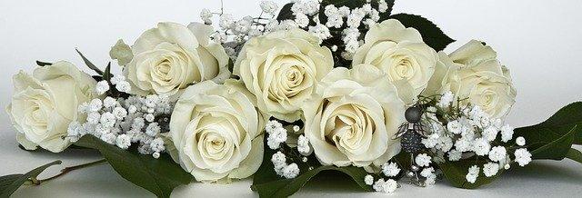 roses-1420745_640.jpg