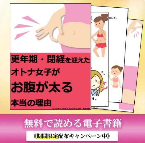 電子書籍閉経:更年期DL.png