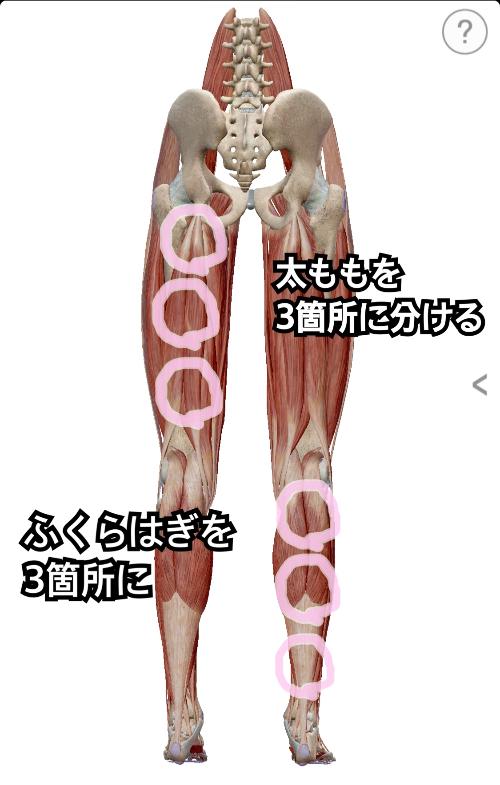 筋膜リリース下肢編.jpg