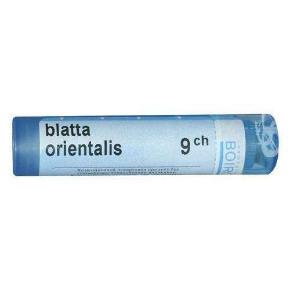 BOIRON_Blatta_Orientalis_9CH_granules_4g_asthma_chronic_bronchitis_spo_spo.jpg