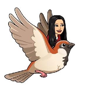 アバター、旅立ち、鳥