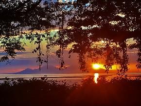 パプア 初日の出 太陽