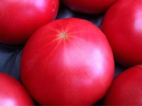 トマトの星2.jpg