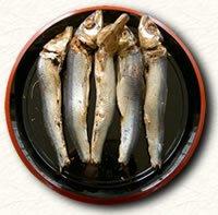 urume_bushi.jpg