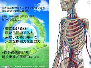 ヒクセルエネルキー循環.png