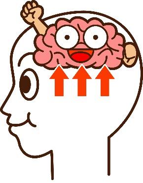 脳血流アップ.jpg