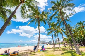 hawaii_beach02.jpg