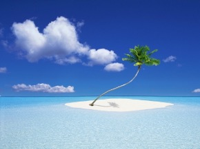 A-coconut-tree-island_1600x1200.jpg