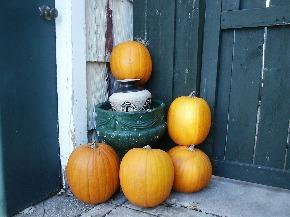 autumn-207854_1920.jpg