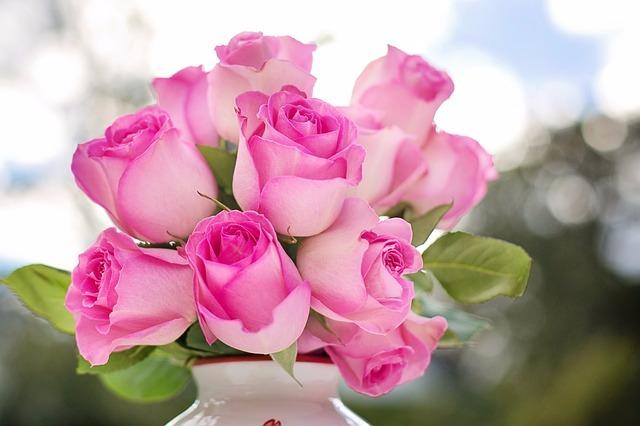 pink-roses-2191636_640.jpg