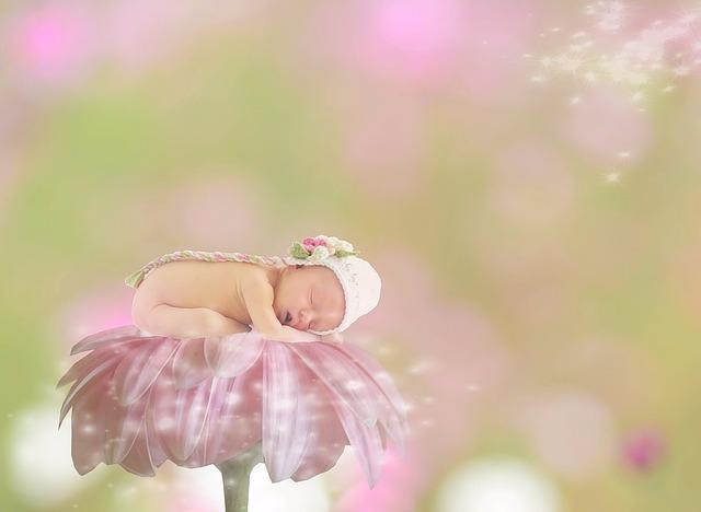 baby-1953385_640.jpg