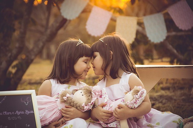 twins-2629776_640.jpg