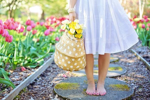 spring-2298279_640.jpg