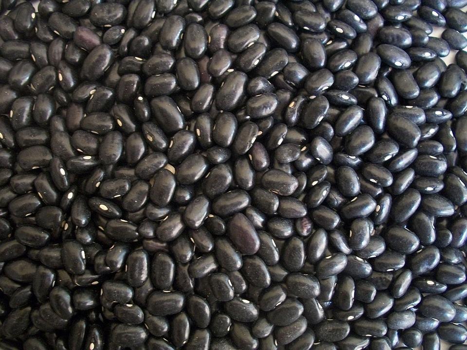 black-beans-14522_960_720.jpg