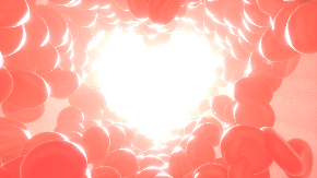 heart-2176218_960_720.png