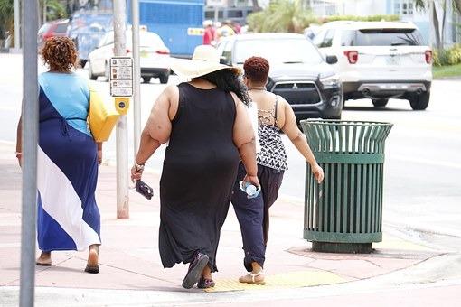 obesity-993126__340.jpg