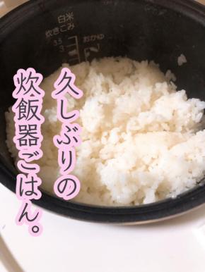 炊飯器ごはん.jpg