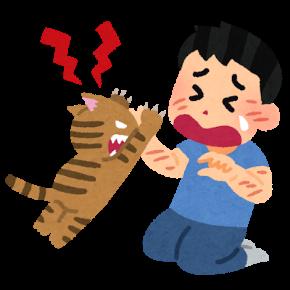 ひっかき猫.png