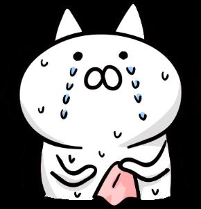 震えながら泣く猫.png