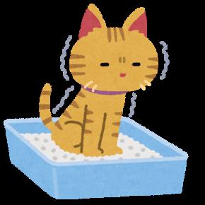 下痢猫.png