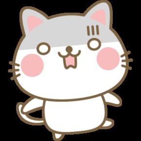 ショックを受ける猫.png