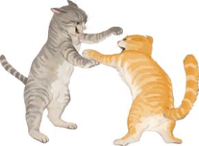 猫の喧嘩イラスト.jpg