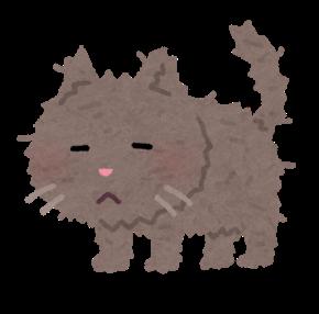 ボロボロの猫イラスト.png