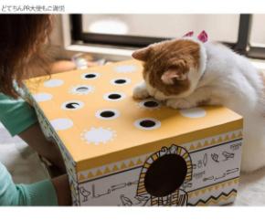 猫もぐらたたき.jpg