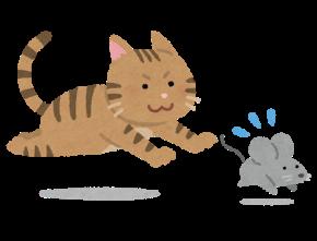猫とねずみ.png