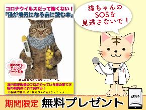 猫コロナバナー3.png