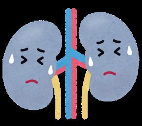 不健康な腎臓.png